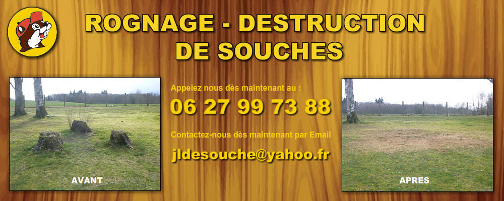 destruction-souche-87